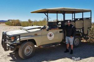 safari na africa do sul - inverdoorn
